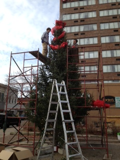 New City Manager to Light Downtown Christmas Tree